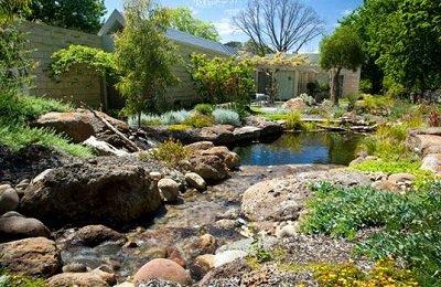billabong pool landscaping